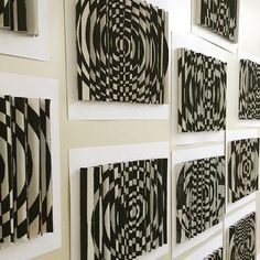 Agamographs
