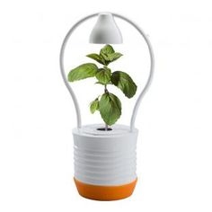 Reklamní předměty - - grafické, softwarové a internetové studio Planter Pots, Personal Care, Self Care, Personal Hygiene