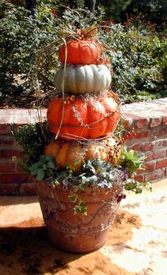 Pumpkins Topiary - love this!