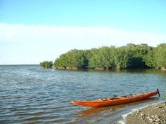 Paddling out from the Apollo Beach Nature Preserve is an interesting mixture of nature and industry. The preserve is outlined by a not-so-nice beach that… Apollo Beach, Canoe Trip, Florida Beaches, Beach Fun, Kayaking, Places To Go, Boat, Nature, Kayaks