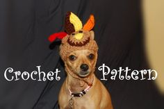 Turkey Hat for dogs.  CUTE!