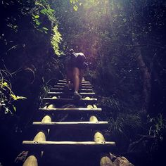 Climbing up into the unknown! . . . . #incredible #travelbug #wanderlust #perfect #vacation #holiday #beautiful #travelling #travels #instatravel #photography #travelphotography #exploring #onecountryatatime #instatravels #travel #travelgram #traveller #travelpics #traveltheworld #travellife #travelphoto #photographer #southafrica #mountain #hike #girlsthathike by avrilina_photography. vacation #travelbug #exploring #traveltheworld #incredible #travellife #instatravels #photography #mountain…