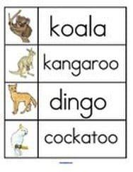 Australian Animals Letters And Literacy Activities For Preschool PreK Kindergarten