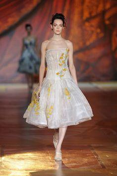 Roberto Cavalli Fall 2008 Ready-to-Wear Fashion Show - Isabeli Fontana