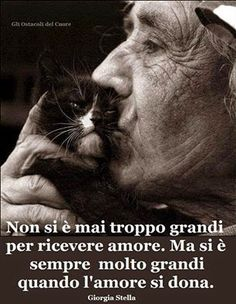 ********You are never too old to receive love. But one is always very great when love is given Feelings And Emotions, Cute Friends, Cute Cats And Kittens, Pope Francis, Faith In Humanity, Friends Forever, Cat Art, Beautiful Words, Animals And Pets