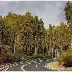 Road near Kamyaran City in the Province Kurdistan, Iran.