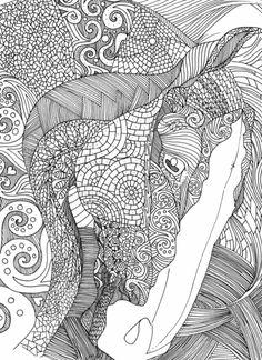Graceful Horse | Adult coloring pages,Värityskirjat ja ...