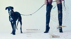 Greyhound with mistress...