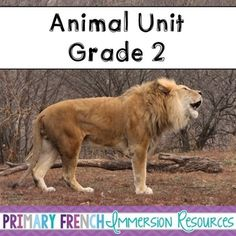 Includes: ♦ 30 image flashcards of interactions between humans and animals ♦ 24 adaptation word wall cards/animal vocabulary ♦ 9 definition cards (e. behavioural adaptations) ♦ Varying worksheets (e. Science Worksheets, Science Curriculum, Teaching Science, Teaching Ideas, Grade 2 Science, Stop Bullying, Ted Talks, Social Studies, Lions