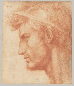 Study for the Head of Julius Caesar, ca. 1520–21 Andrea del Sarto (Italian, 1486–1530) Red chalk 8 1/2 x 7 1/4 in. (21.5 x 18.4 cm)