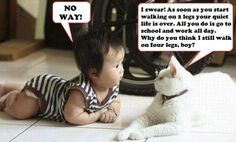 No Way Funny Picture