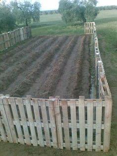pallets garden fence/ perfect for chicken coop fence  moat...also a lot more in this post for pallet ideas!!