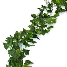 AED 195  192 Feet - 24 English Ivy Silk Greenery Wedding Party Garlands in the UAE. See prices, reviews and buy in Dubai, Abu Dhabi, Sharjah. Kitchen - desertcart.com