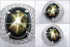 Elegant Strong Black SAFIR Star, BIG Size  (RSG 052)
