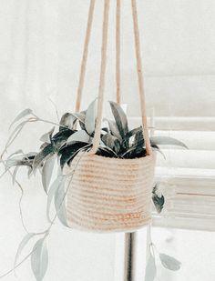 plant aesthetic