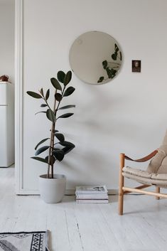 Minimal Home Inspiration Living Room Inspiration, Interior Inspiration, Home Living Room, Living Room Decor, Minimalist Home, Home Interior Design, Decoration, Home Decor, Rubber Plant
