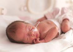 65 Ideas De Prematuros Prematuro Bebes Prematuros Bebe