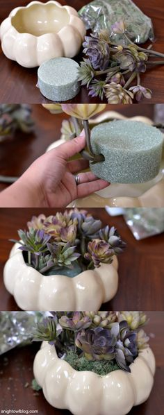 DIY Thanksgiving Succulent Centerpiece | Great idea for your holiday parties.