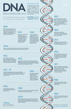 DNA Day inforgraphic                                                                                                                                                                                 More Biomedical Science, Forensic Science, Science Biology, Science Facts, Life Science, Computer Science, Ap Biology, Study Biology, Biology Lessons