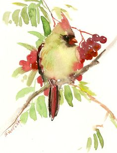 "Female Cardinal bird artwork, 10"" x 8"", original watercolor painting, olive green wall art, scarlet red green painting by ORIGINALONLY on Etsy"
