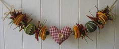 A use for my dried fruit    http://lyndsay-pretty-beautiful.blogspot.com/2010/04/spring-has-sprung.html#