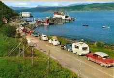 Vw Beetles, Norway, Modern, Image, Vans, Photo Illustration, Trendy Tree, Vw Bugs, Van