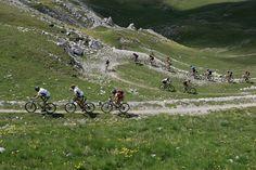 Scopri insieme ad Alberto, titolare dell'Hotel Vedig e Istruttore di Mountain Bike, i più bei percorsi di mountain bike e vivrai una meravigliosa ed indimenticabile vacanza all'insegna del fitness outdoor in Alta Valtellina.