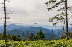 Write up and trail notes from last week's three day hike over Karisaka Toge.  http://ridgelineimages.com/hiking/karisaka-toge/