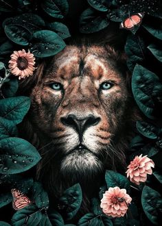 wild lion with flowers wild lion with flowers lion face wallpaper wild lion head photos . Most Beautiful Animals, Beautiful Creatures, Animal Paintings, Animal Drawings, Jungle Animals, Cute Animals, Wild Lion, Lion Art, Animal Posters
