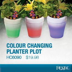 "Colour Changing Planter Pot From Regal lluminates your home, patio or landscape. Decorative, semi-translucent white pot has a built-in LED light in its base that gradually cycles through a rainbow of colours. Perfect for indoor or outdoor use; just add your own real or faux flowers and plants! Includes two pieces (pot and base). Requires 3-AAA batteries (not included). Has on/off switch. Made of durable plastic. 7-1/4""H x 6-1/2""Diam. Product Number - HC6090"