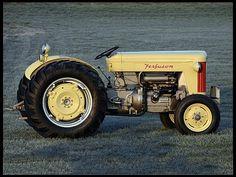 S40 1957 Ferguson 40