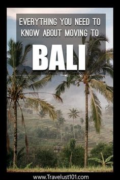 Moving to Bali? Get the Best Tips on Everything You Need to Know! - Moving to Bali? Get the Best Tips on Everything You Need to Know! Bali Travel Guide, Solo Travel Tips, Travel Guides, Travel Advice, Travel Hacks, Sanur Bali, Ubud, Travel Abroad, Asia Travel