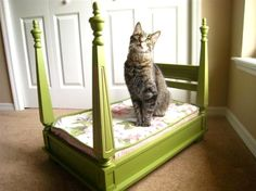 This is a cat bed that looks like a four poster bed, and I'm pretty sure it's just a side table turned upside down. Just get a cushion and BAM we could have a 4 poster bed for our girls or the kitties at the humane society! Diy Pet, Diy Dog Bed, Old End Tables, Small Tables, Cat House Diy, Animal Projects, Diy Projects, Here Kitty Kitty, Happy Kitty