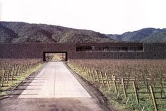 Dominus winery, Napa Valley, CA by Herzog + De Meuron