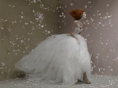 St. Pucchi's latest photoshoot of their 2012 couture collection