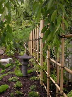 10 Garden Fence Ideas to Make Your Green Space More Beautiful Looking for best bamboo fence and other fence ideas? Visit the website for the photos a… - Alles über den Garten Bamboo Trellis, Bamboo Fence, Garden Trellis, Garden Fencing, Herbs Garden, Japanese Fence, Japanese Bamboo, Trellis Design, Bamboo Screening