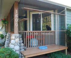 A catio for indoor-only cats