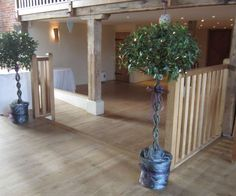 These bay trees on a venue entrance have ribbon trim that matches the seat sashes within.