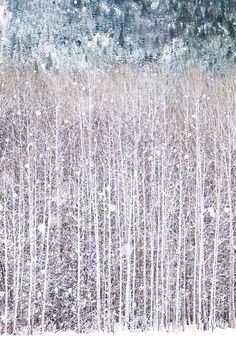 Winter Photography Birch Trees in Snow Nature by GeorgiannaLane