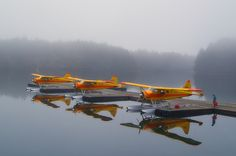 De Havilland Beavers owned by Andrew Airways waiting for the visibility to improve at the Trident Basin floatplane dock in Kodiak Alaska.