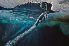 Tento obrázok som vytvoril keď sme sa boli potápať v S.Ľ.O. Bolo to super.