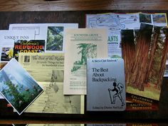 Paper Trail: Redwoods via Jeralyn Gerba on FathomAway.com.  #Travel #Fathom #Redwoods