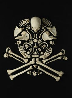 so cool a skull made out of bones!!!