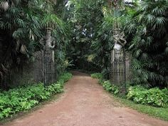 CENTRE FOR THE AESTHETIC REVOLUTION: A VISIT TO A GEOFFREY BAWA GARDEN IN SRI LANKA BY DANNY CALVI AND JOP VAN BENNEKOM