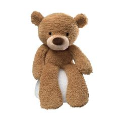 Fuzzy Beige Bear Gund Teddy Bear Collection from Colonial House of Flowers