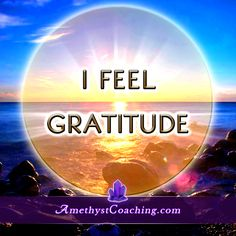 Today's Affirmation : I FEEL Gratitude. Visit us www.amethystcoaching.com Personal Coaching Site #Affirmation #coaching Like us on Facebook Here: https://www.facebook.com/amethystcoaching?ref=hl