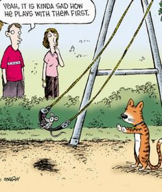 funny cat mouse swing cartoon