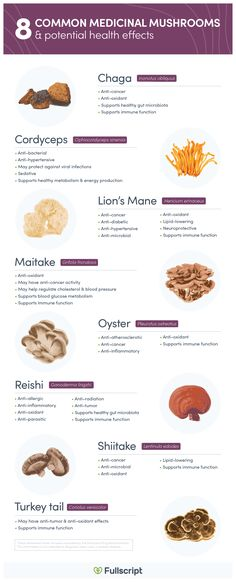 Medicinal mushrooms are edible macroscopic fungi (visible to the naked eye) that are used for their beneficial health properties. Health Benefits Of Mushrooms, Mushroom Benefits, High Cholesterol Diet, Mushroom Varieties, Herbal Plants, Medicinal Plants, Growing Mushrooms, Herbal Medicine, Fungi