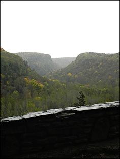 Letchworth State Park, NY Ny Parks, State Parks, Great Places, Places Ive Been, Letchworth State Park, Upstate New York, Beautiful Park, Great Life, Mustangs