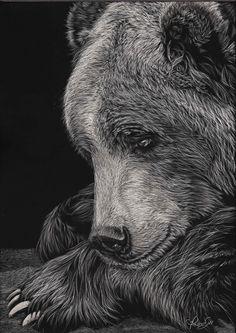 Beautiful Scratchboard Portraits of Animals by Allan Ace Adams (Every Line is a Scratch) - My Modern Met